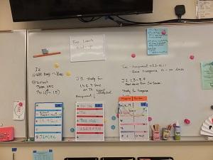 Lesson plan DSCF5370