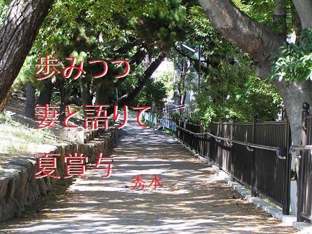 ayumi01.jpg