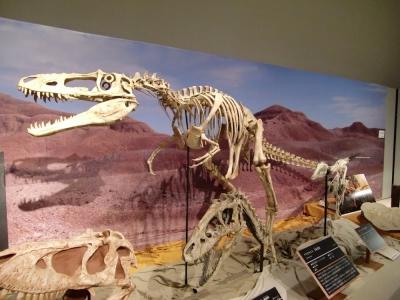 超肉食恐竜 T・rex EpisodeⅡ』感...