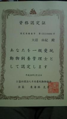 DSC_1940.jpg