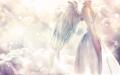angel-wallpapers-hd-free.jpg