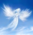 machi-silvia-angels.png
