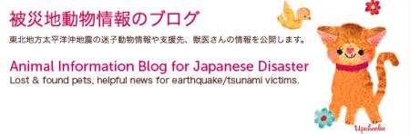 震災犬ブログ