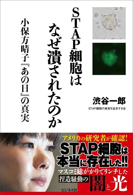 STAP04A.jpg
