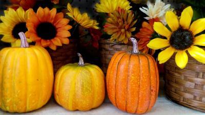 halloween-973858_1280_convert_20160916093148.jpg