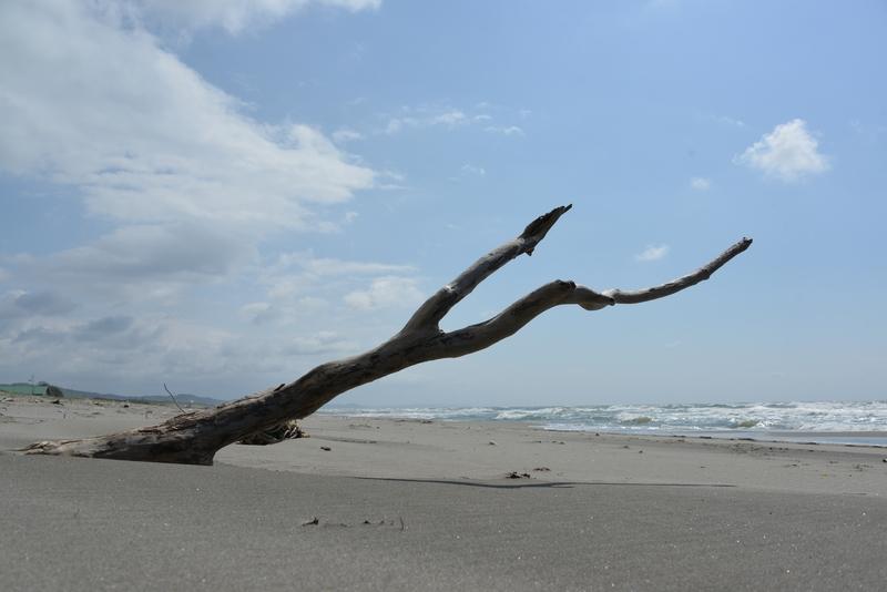 浜に立つ-2