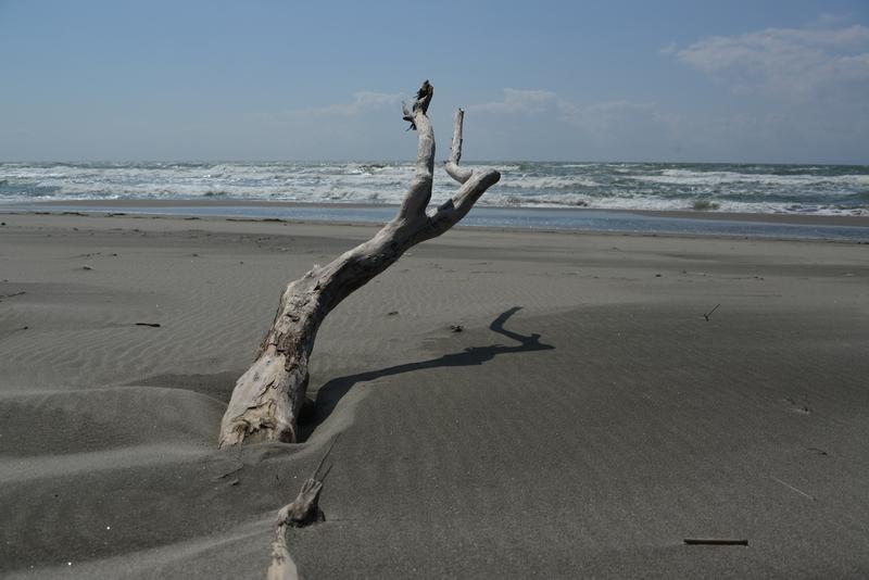 浜に立つ-3