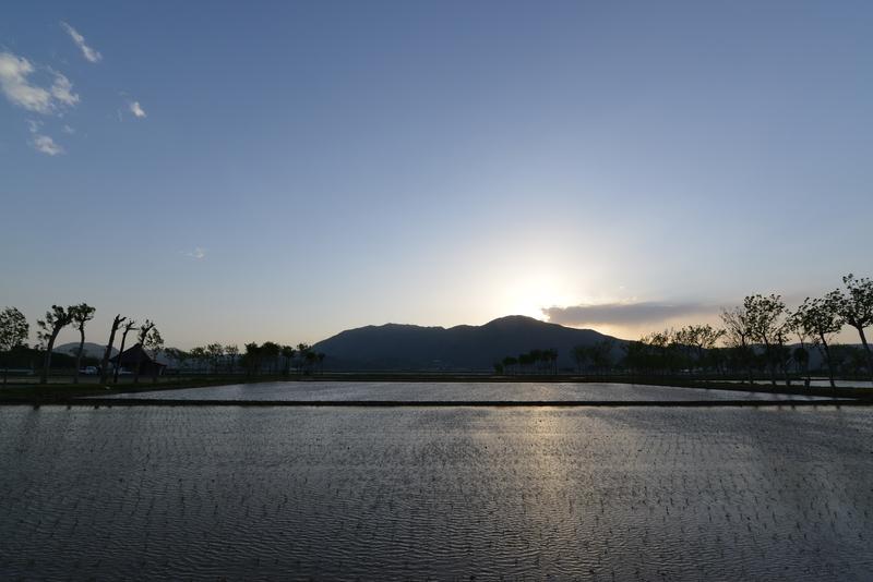 田植え期の弥彦山-1