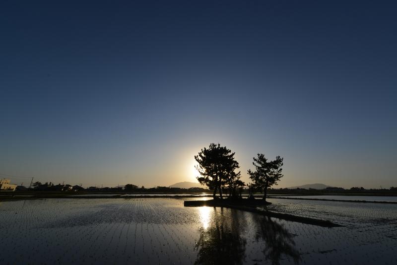 水田の塚-2