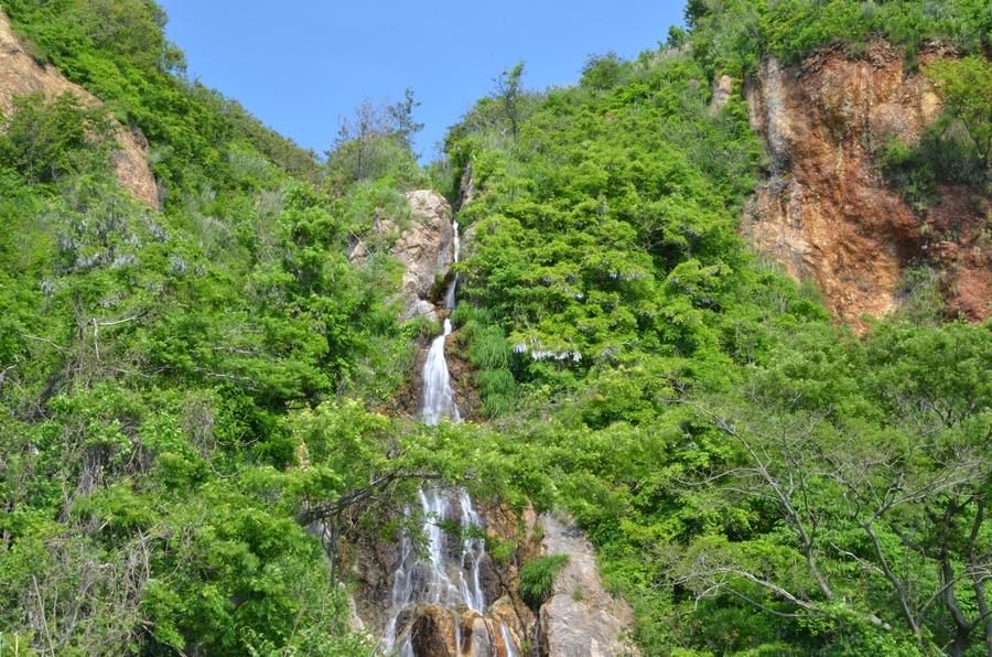 新緑の浜滝-3
