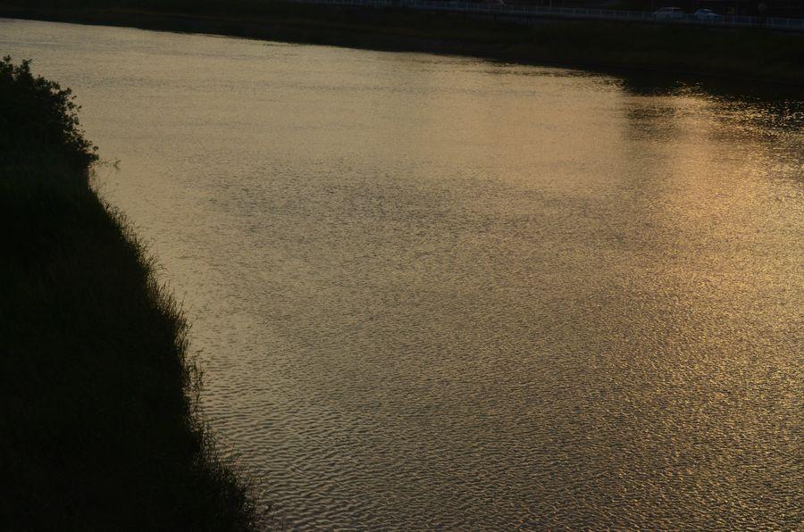 夕陽の川面-1