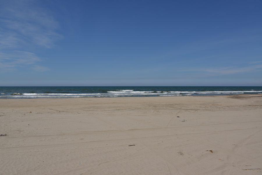 砂浜と鳶-3