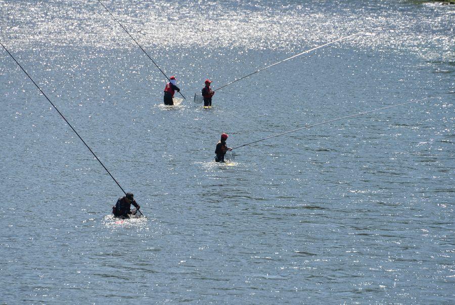 鮎釣り-5