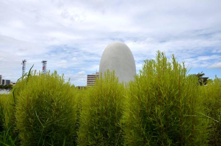 ほうき草と卵-3