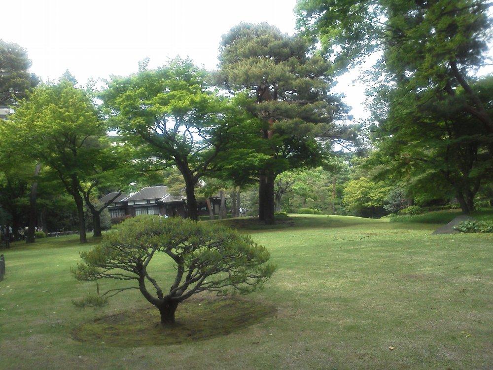 F1000838殿ケ谷戸庭園