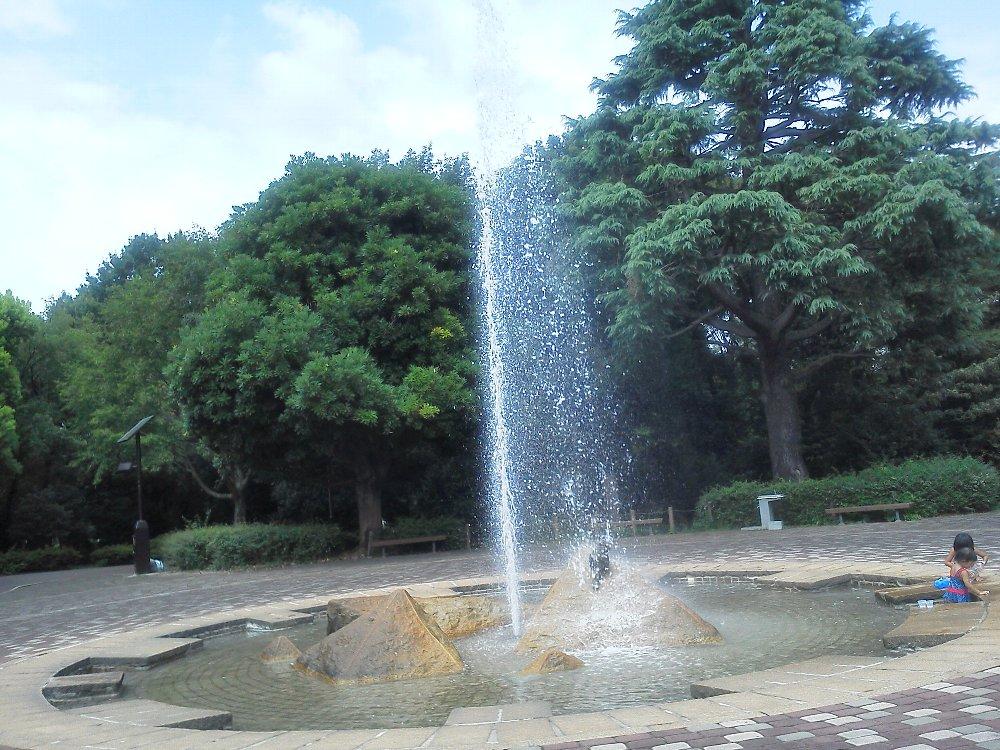 F1000378大泉中央公園水遊び