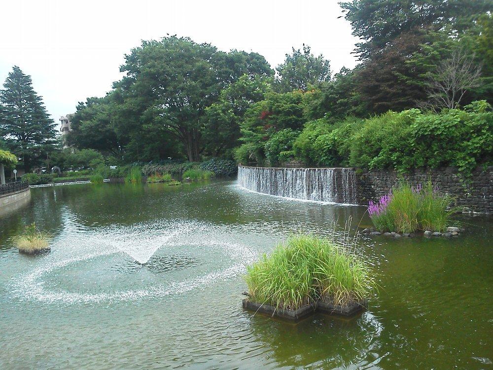 F1000166都立武蔵国分寺公園 池の滝と噴水