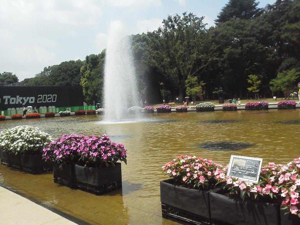 F1000352上野公園噴水