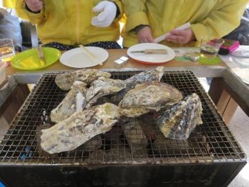 牡蠣の口開き待ち