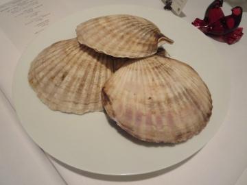 立派な帆立貝、テーブルまで見せに来てくれました