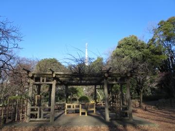 有栖川宮公園内 (2)