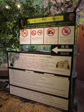 園内ルール