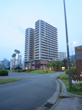 八幡駅側からの遠目の外観