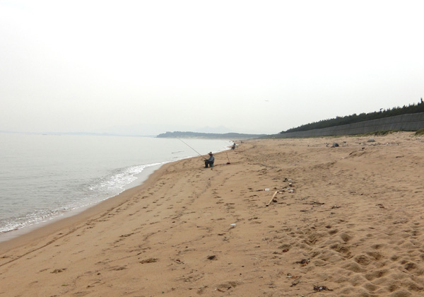 20160612ビーチコーミング07