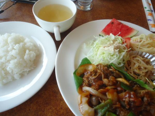 9/1 シフィア・牛肉と野菜のデミグラスさっと煮