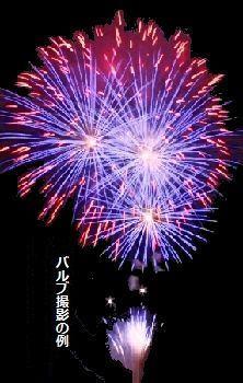 芦野聖天花火