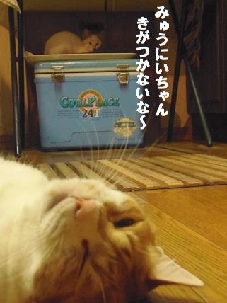 あきちゃん7