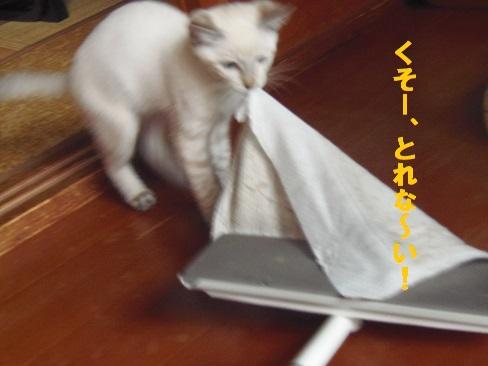 あきちゃん2日目3