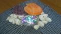 アワビの貝殻の飾り1