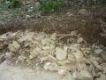 イノシシによる石垣の崩壊3