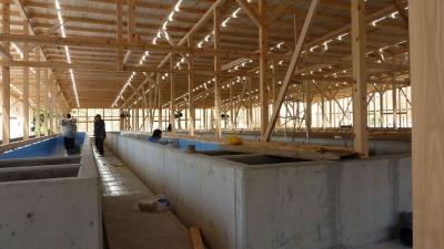 アワビ養殖施設 建設中4