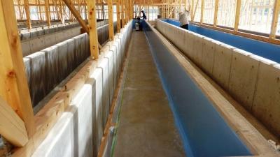 アワビ養殖施設 建設中6