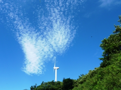 佐田岬半島の風車2