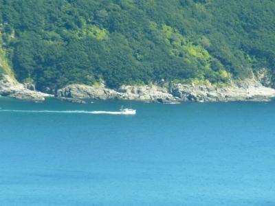 佐田岬半島の漁船出漁2