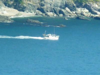 佐田岬半島の漁船出漁3