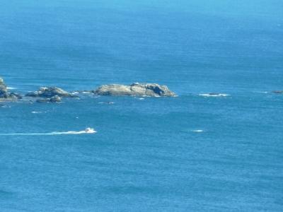 佐田岬半島の漁船出漁6