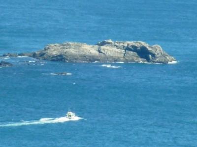 佐田岬半島の漁船出漁7