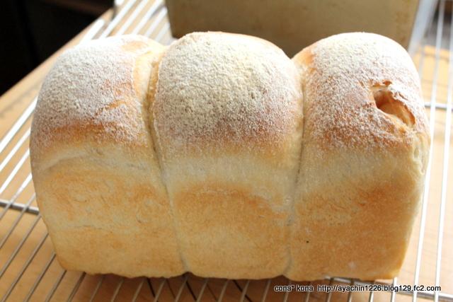 16.08.04イギリスパン7