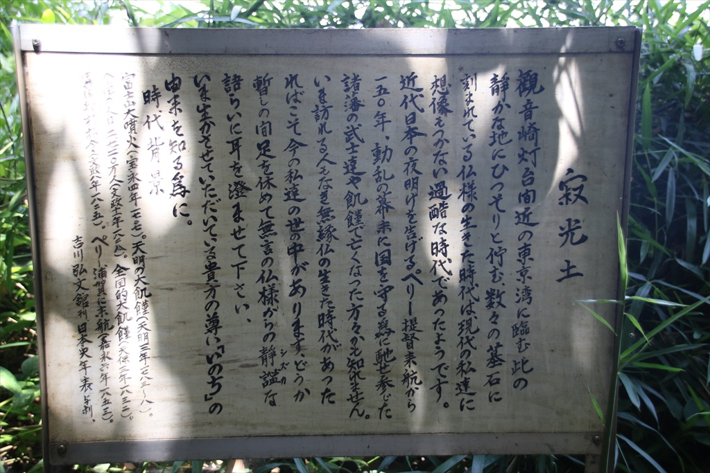 観音崎公園にて_9