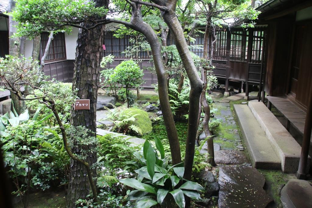 廊下と見えている中庭_2