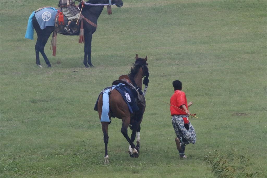 あれま、馬から落ちてしまったかな?_5