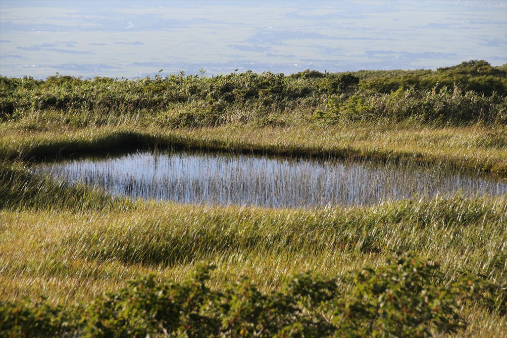 ここからは池塘がたくさんあった_1