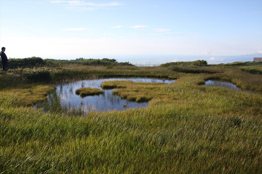 ここからは池塘がたくさんあった_10