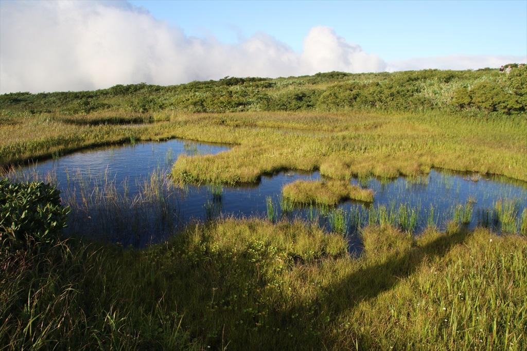 ここからは池塘がたくさんあった_11