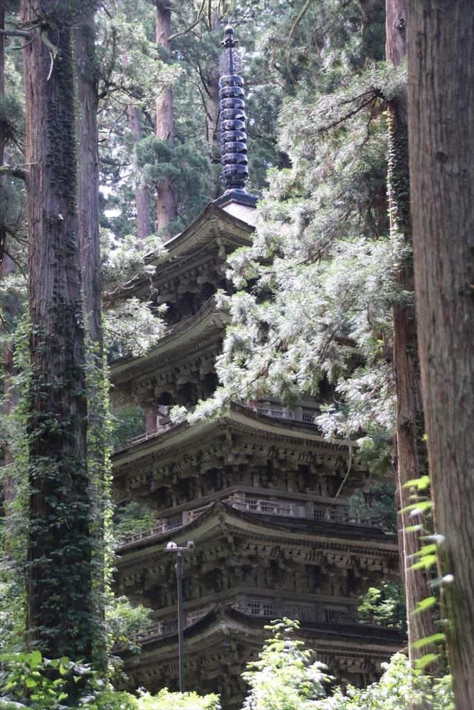 杉木立の間から、国宝五重塔が見える_1
