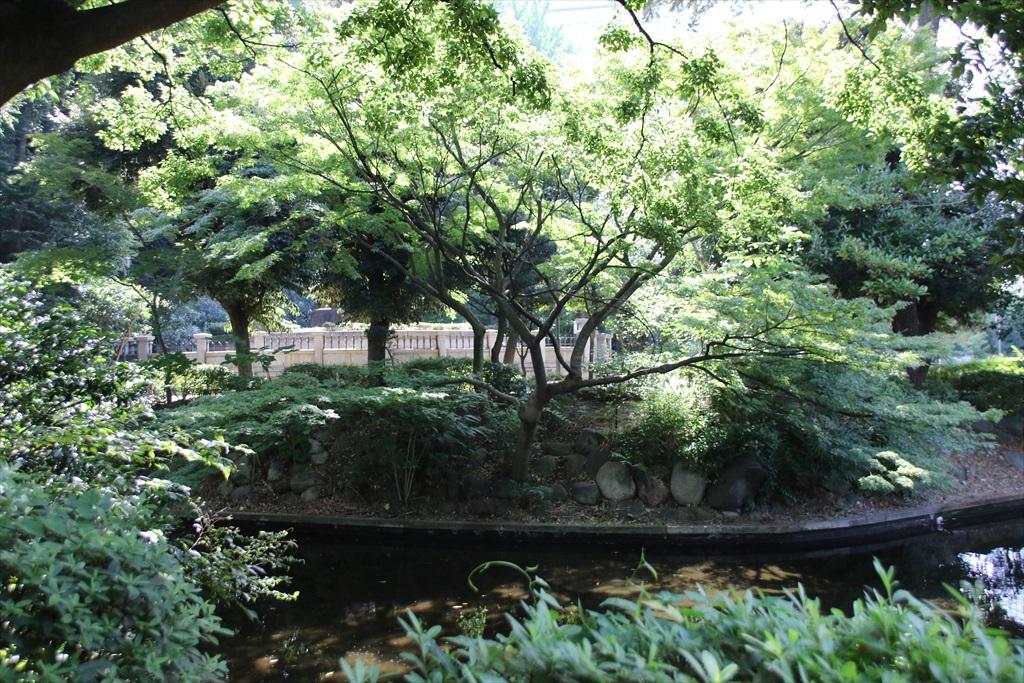 清水谷公園_1